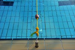 Float, rope and swimming pool Stock Photos