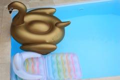 Floaties in einem Pool Stockfotografie