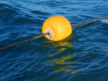 Floating. Buoy stock image