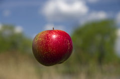 Floating Apple Royalty Free Stock Photo