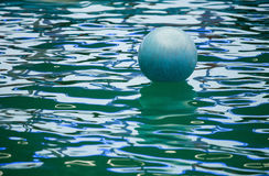 A floating  ball in dolphinarium Royalty Free Stock Photography