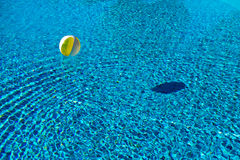 Floating ball in swimming pool Royalty Free Stock Image