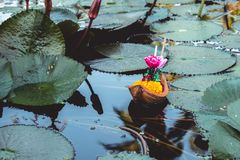 Floating basket or `Krathong` in Thai word, is floating on lotus pond. royalty free stock photography