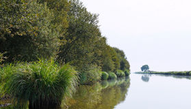 Floating in boat in Briere Marsh, France Stock Photography