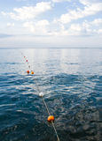 Floating Border of swimming area Stock Photography