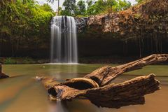 Floating branch in waterfall river spring. royalty free stock images