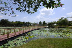 Floating Bridge at Cyberjaya Lake stock photos