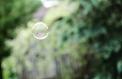 Floating Bubble. A single bubble floating through the air Royalty Free Stock Photography