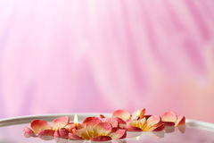 Floating candles stock images