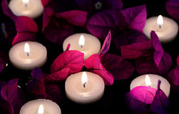 Floating candles. With Bougainvillea flowers and leaves royalty free stock photography