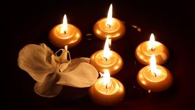 Floating candles and orchid stock video