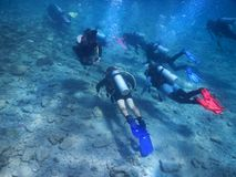 Floating divers in the Red Sea, gulf of Eilat, Israel Stock Photo
