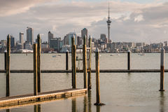 Floating docks in Auckland marina Stock Image