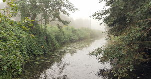Floating down a river in a beautiful foggy forest. 4k stock footage