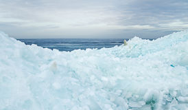 Floating and drifting ice Stock Photos