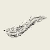 Floating feather. Graphic feather, vector art illustration Royalty Free Stock Image