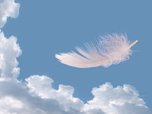 Floating feather over sky - lightness, freedom concept Royalty Free Stock Photography