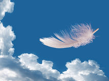 Floating feather over sky - lightness, freedom concept Royalty Free Stock Photo
