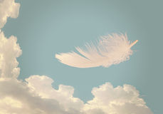 Floating feather over sky - lightness, freedom concept. Royalty Free Stock Photo
