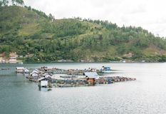Floating Fish Cages Farming in the Lut Tawar Lake, Takengon, Ace. People grow fish in their local ponds using a simple fish cage in Lut Tawar Lake, Takengon Royalty Free Stock Images