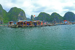 Floating fish farms vietnam Stock Photography
