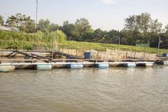 Floating fish pens on Mekong River in Vietnam. Floating fish pens along waterfront of Mekong River Delta in Vietnam royalty free stock image