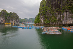 Floating fishing village Stock Photos