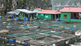 Floating fishing village stock footage