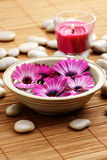 Floating flowers Stock Images