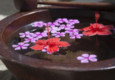 Floating flowers in bowl Stock Photo
