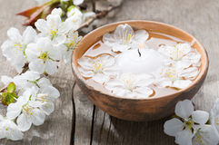 Floating flowers ( Cherry blossom)  and burning candle. Royalty Free Stock Photography