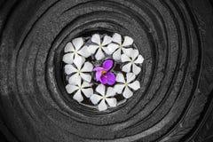 Floating flowers Royalty Free Stock Image