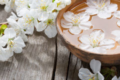 Floating flowers    in сlay  bowl. Royalty Free Stock Photo