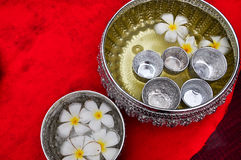 Floating flowers. In water bowl is normally used in traditional Thai Songkran festival to pay respect to the elderly stock image