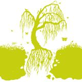 Floating and flying tree in the air Royalty Free Stock Photography
