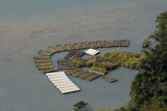 Floating Gardens. These are floating gardens on Sun Moon Lake in Taiwan. Some are used to grow vegetables royalty free stock photos