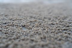 The floating groove of the habitat of Horn-eyed ghost crab or Ocypode on the white sand by the sea.  royalty free stock photos