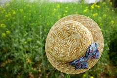 Floating hat in rape flower field Stock Photos