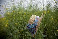 Floating hat in rape flower field Royalty Free Stock Photo