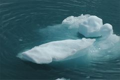 Floating Ice Stock Images