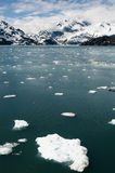 Floating ice in Glacier Bay, Alaska. Small ice chunks floating in the waters of Glacier Bay, Alaska, with mountains and clouds in the background Royalty Free Stock Images