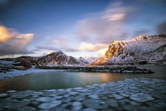 Floating ice in the sea Lofoten royalty free stock photo