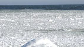 Floating ice in the sea near the shore stock video footage