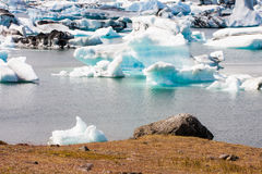 Floating icebergs Stock Images