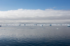 Floating Icebergs, Greenland Royalty Free Stock Image