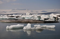 Floating icebergs, Iceland Stock Photography