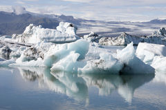 Floating icebergs in Iceland Royalty Free Stock Image