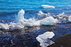 Floating ices on the beach Royalty Free Stock Photography