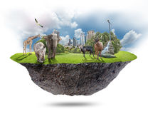 Floating island. The floating island and animals on white background Royalty Free Stock Images