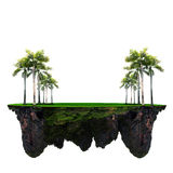 Floating island with green plam tree and grass field. Use for background backdrop Royalty Free Stock Image